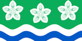 Cumbria Flag
